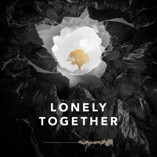AVICII LONELY TOGETHER