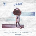 LOST FREQUENCIES crazy