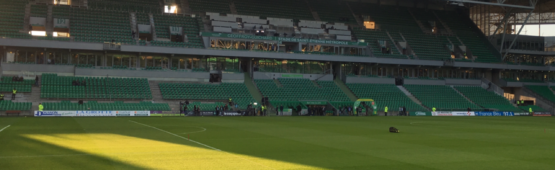 La pelouse du stade Geoffroy-Guichard / photo ACTIV RADIO
