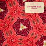 Calvin Harris feat. Tom Grennan By Your Side (Acoustic)